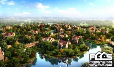 上海半岛君望